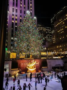 Tips for visiting New York City at Christmas The Rockefeller Center Christmas Tree-Top Tips for visiting New York City at Christmas Visiting hours Visiting hours may refer to: New York Winter, Visit New York City, New York City Travel, New York Life, Nyc Life, City Life, New York Noel, New York Weihnachten, New York City Christmas