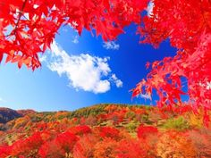 12. Lake Momiji (Nagano)