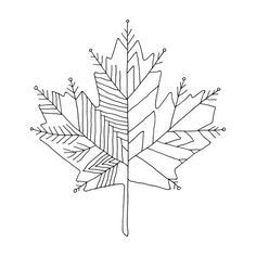 Canadian Maple Leaf Colouring Page with Abstract Drawing in Mind Form by Donald Lee Geometric Drawing, Abstract Drawings, Leaf Coloring Page, Coloring Pages, Maple Tree Tattoos, Black Christmas Tree Decorations, Natur Tattoos, Leaf Art, Blue Art