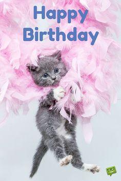 Happy Birthday Images that Make an Impression! Happy Birthday Pictures, Happy Birthday Quotes, Happy Birthday Greetings, Birthday Messages, Cat Birthday, Animal Birthday, Birthday Blessings, Happy B Day, Birthdays