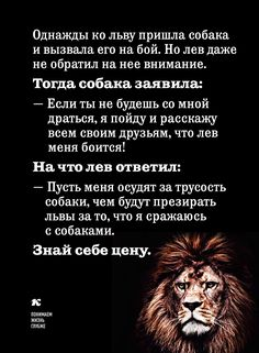 Smart sayings-Умные высказывания Wisdom - Smart Quotes, Wise Quotes, Words Quotes, Funny Quotes, Wisdom Sayings, Smart Sayings, Intelligent Words, Russian Quotes, Learning To Say No