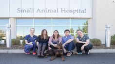 A Doberman pinscher puppy named Bo nearly drowned in the family pool, then his heart stopped upon arrival at the University of Florida's pet emergency clinic in Ocala. But after CPR administered by UF veterinary medical specialists, additional treatment at the university's Small Animal Hospital in Gainesville and a dose of good luck, Bo survived to return home in early November.