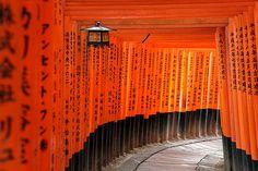 A 2 week itinerary in Japan: Tokyo, Osaka, Kyoto, Takayama & Hiroshima