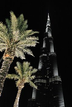 #Dubai - Burj Khalifa with palms at night