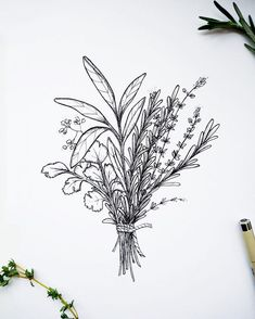 Hand drawn flowers and bouquets by Fancy art on Creative MarketHand drawn flowers and bouquets by Fancy art on Creative MarketFlowers Drawing Simple Bouquet Of IdeasFlowers Drawing Simple Bouquet Of Ideas drawing flowersDIY Herb Tattoo, Botanisches Tattoo, Body Art Tattoos, Sleeve Tattoos, Tatoos, Botanical Tattoo, Botanical Drawings, Botanical Illustration, Flower Bouquet Drawing