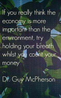 If you really think the economy is more important than the environment, try holding your breath whilst counting your money Environment vs Economy - Family Budgeting Money Quotes, Life Quotes, Great Quotes, Inspirational Quotes, Super Quotes, Inspirational Environmental Quotes, Motivational, Beau Message, Cogito Ergo Sum