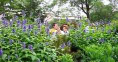 Dirtworks Landscape Architecture | Cleveland Botanical Garden - Elizabeth and Nona Evans Restorative Gardens