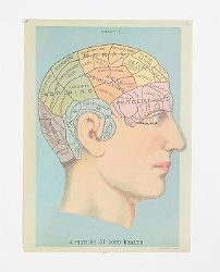 Phrenology Head Poster - Blue Multi - One Size  $24.00