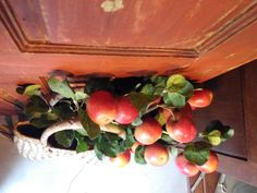 #mercadoloftstore #mls #umseisum #store #loja #lojadedecoração #interior #interiordesign #colour #red #orange #basket #handmade #beauty #natural #door #decorpieces #shapes #geometry #irregular
