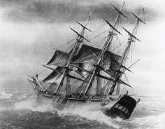 Clipper Ship Artist Unknown  - stock photo