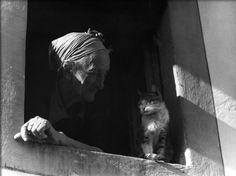 Palmyra and Cat - by Vincenzo Balocchi (1892 - 1975), Italian