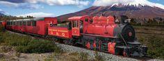 Tren Crucero Ecuador - Ecuador Destiny