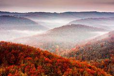 Autumn Fogs by Evgeni Dinev