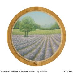 Mayfield Lavender in Bloom Carshalton Cheese Board