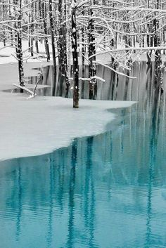 Winter Wonderland- Blue Pond & Spring Snow,Hokkaido by Kent Shiraishi Winter Szenen, Winter Magic, Winter White, Spring Snow, Spring Time, Snow Scenes, Snow And Ice, Winter Beauty, Winter Pictures