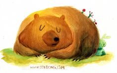 Water colors bears. by Ssebong Kim, via Behance