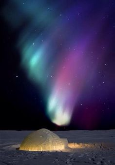 An igloo under the Northern lights