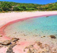 Pink Sand Beach, Beach Fun, Beach Trip, Sardinia Beach, Sardinia Italy, Alghero, Cagliari, Rosa Strand, Beaches In The World