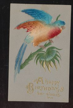 Colorful Parrot Bird Antique Heavy Embossed Greeting Postcard CCC 218 | eBay