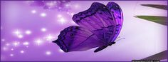 fairy profile pictures for facebook | Pin Faith Trust Pixie Dust This Is My Second Tattoo On Pinterest ...