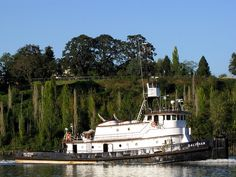 Tugboats, Mansions, House Styles, Manor Houses, Villas, Mansion, Palaces, Mansion Houses, Villa