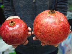Organic 15 Turkey Giant Pomegranate seeds Punica Granatum Shrub Fruit Tree RARE