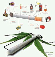 Cigarettes Vs. Marijuana... It's just weed and more weed man hahaa