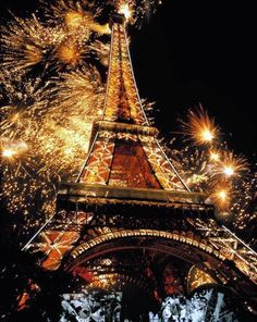 Effiel Tower !! at night was amazing !! <3