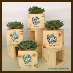 Succulents In Wooden Boxes by Motifs And Memories - 005