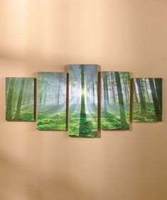5-Pc. Canvas Wall Art Sets $11.95