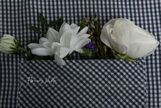 Kvety - Flowers Photo Flowers, Plants, Photos, Pictures, Plant, Royal Icing Flowers, Flower, Florals, Floral