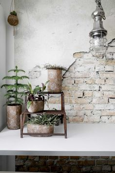 INDUSTRIEEL X BOHEMIAN • het roest van dit plantenhoekje geeft het lichte interieur een stoere uitstraling | the rust in this corner with plants gives the interior a industrial touch | vtwonen 03-2018 | Fotografie Peggy Janssen