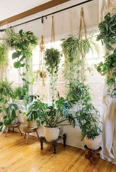 26 Beautiful interior design with indoor plants 26 Beautiful . - 26 Beautiful interior design with house plants 26 Beautiful interior design with indo - Cute Dorm Rooms, Cool Rooms, Decoration Plante, House Plants Decor, Plants In Bedroom, Plants In Living Room, Plant Rooms, Garden Bedroom, Garden Living