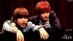 b1a4 sandeul gif  funny | tags sandeul jinyoung b1a4