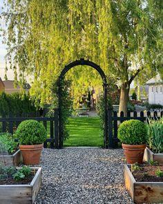 20 Garden Answer Ideas In 2020 Garden Plants Garden Landscaping