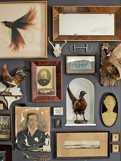 Showcase Cool Collectibles An array of junk-shop loot—mirrors, taxidermied birds, a horse bit—fills one living-room wall of this upstate New York home.