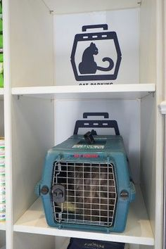 If you haven& been into Blue Cross Animal Hospital in the last few weeks, you may not have seen the final installation of our cat-friendly Cat Parking spaces. Waiting Room Design, Waiting Rooms, Cat Park, Veterinarian Office, Vet Office, Pet Hotel, Vet Clinics, Hospital Design, Clinic Design