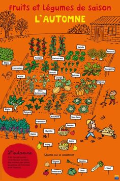 Potager gardening stress attraction, utility and diversity by planting vegetables and flowers in groups potager garden ideas French Education, Permaculture Design, Potager Garden, Balcony Garden, French Classroom, French Food, French Stuff, French Kids, French Lessons