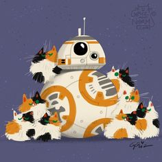 Fluffy calico kitties really love BB8.