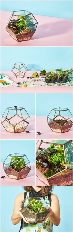Bring a little outside in and #DIY this adorable terrarium for Earth Day!