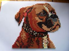 Boxer dog hama perler beads (2x2 pegboards) by Shazann