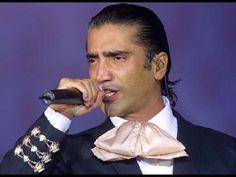 Lo mejor de Alejandro Fernández. 20 grandes canciones
