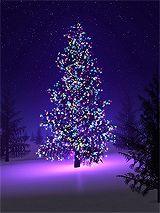 The Last Christmas mix Purple Christmas Tree, Christmas Mix, Christmas Night, Very Merry Christmas, Christmas Trees, Christmas Classics, Christmas Fireplace, Christmas Quotes, Christmas Movies