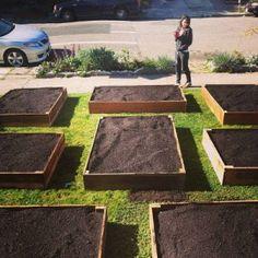 Couple Turns Useless Front Lawn into Beautiful Edible Garden **(36 PHOTOS)**