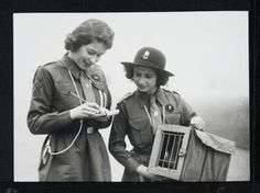 Photograph showing Princess Elizabeth writing out a message on a pad next to Princess Margaret, who is wearing a hat and holding a carrier pigeon box, containing a pigeon. Both Princesses were part of the Buckingham Palace Girl Guide Troop.