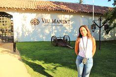 Chile, Santa Cruz, Valle Colchagua, Viña Viu Manent