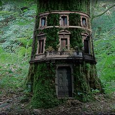 The most beautiful tree houses from around the world.boredpan… The most beautiful tree houses from around the world.or… Fairy Tree Houses, Fairy Garden Houses, Gnome Garden, Garden Art, Fairy Doors On Trees, Fairy Garden Doors, Fairy Village, Garden Table, Garden Ideas