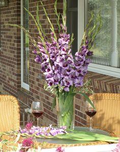 Glorious Gladiolus | Flower Bulb Crazy