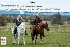 Välkommen! | Beridet bågskytte och Tornerspel by Dalecarlian Horse Adventures AB