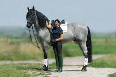 Wow! Love this blue roan!